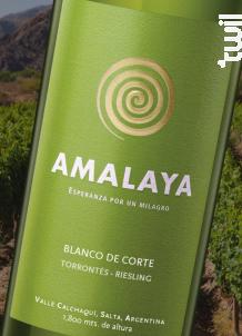 Amalaya Torrontes Riesling - Bodegas Amalaya - 2015 - Blanc