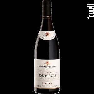 Bourgogne Pinot Noir - Coteaux Des Moines - Bouchard Père & Fils - 2017 - Rouge