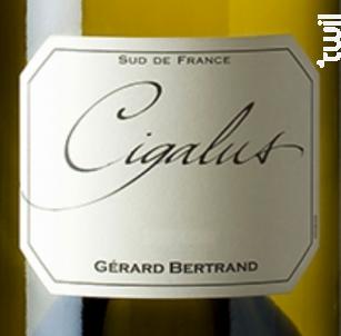 Cigalus - Maison Gérard Bertrand - Domaine de Cigalus - 2018 - Blanc