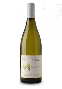 Pourquoi Pas - Chateau De Valflaunes - 2018 - Blanc