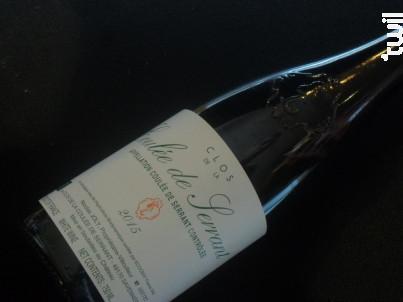 Domaine  Nicolas Joly Coulee De Serrant - Vignobles de la Coulée de Serrant - 2015 - Blanc