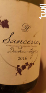 Domaine Doudeau-léger - Domaine Doudeau-Léger - 2015 - Rouge