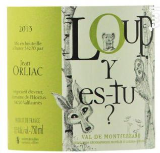 Loup Y Est-tu - Domaine de l'Hortus - 2019 - Blanc