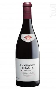 En Grands Champs - Alphonse Mellot - 2011 - Rouge