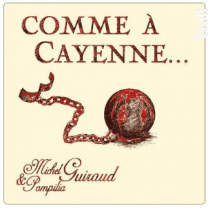 Comme A Cayenne - Domaine Boissezon Guiraud - 2016 - Rouge