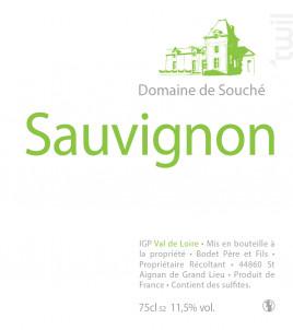 Sauvignon - Château de Souché - 2013 - Blanc