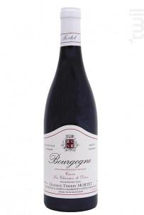 Bourgogne Pinot Noir Les Charmes de Daix - Domaine Thierry Mortet - 2019 - Rouge