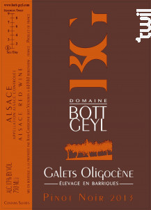 Pinot Noir Galets Oligocène - Domaine BOTT GEYL - 2013 - Rouge