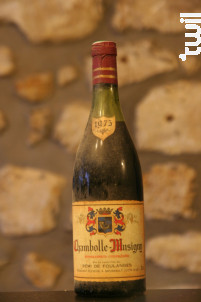 Chambolle-Musigny - Remi de Foulanges - 1975 - Rouge