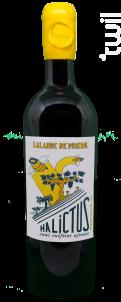 Halictus - Vignobles Bedrenne - 2018 - Rouge