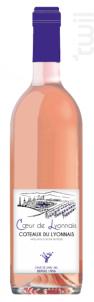 Coeur du Lyonnais - Agamy - 2018 - Rosé