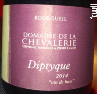 Diptyque - Domaine de la Chevalerie - 2014 - Rouge
