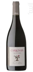 Terre d'Ardoise - Carignan Vieilles Vignes - Mas de Lavail - 2017 - Rouge