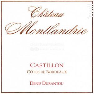 Castillon Château de Montlandrie