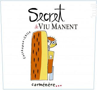 Secret - carmenere - Viu Manent - 2017 - Rouge