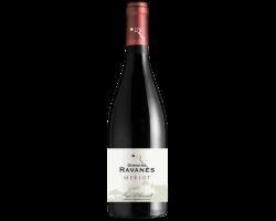 Merlot - Domaine de Ravanès - 2019 - Rouge