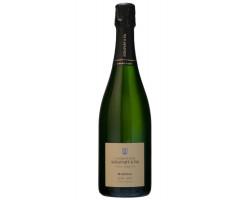 Minéral Extra Brut Blanc de Blancs Grand Cru Millésimé - Champagne Agrapart et Fils - 2006 - Effervescent