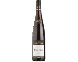 Pinot Noir Collection - Cave de Ribeauvillé - 2017 - Rouge