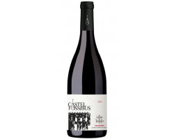 CASTEL FOSSIBUS - DOMAINE OLLIER-TAILLEFER - 2017 - Rouge