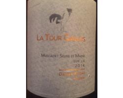 La Tour Gallus - Domaine Gorges - Damien Rineau - 2013 - Blanc