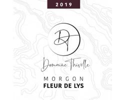 Fleur de Lys - Domaine Thivolle - 2019 - Rouge