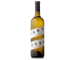 Director's cut - chardonnay - Francis Ford Coppola Winery - 2019 - Blanc