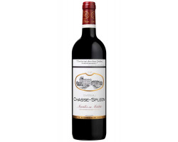 Château Chasse-Spleen - Château Chasse-Spleen - 2013 - Rouge