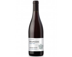 Bourgogne Pinot Noir - Maison Chanzy - 2018 - Rouge