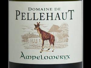 L'Ampélomeryx - Domaine de Pellehaut - 2014 - Blanc