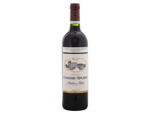Chasse Spleen - Château Chasse-Spleen - 2015 - Rouge