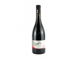 DOMAINE PIC JOAN - DOMAINE PIC JOAN - 2017 - Rouge