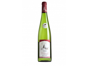 Pinot Blanc - La Cave du Vieil Armand - 2016 - Blanc