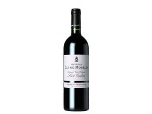 Château Cap de Mourlin - Château Cap de Mourlin - 2006 - Rouge