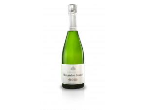 NOIR EXTRA BRUT - Champagne Alexandre Bonnet - Non millésimé - Effervescent