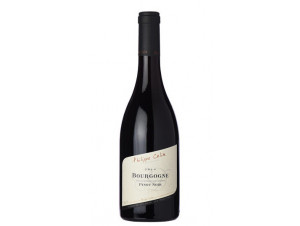 Bourgogne Pinot Noir - Domaine Philippe Colin - 2016 - Rouge