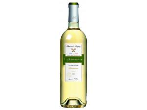 Référence Sauvignon Blanc - Bernard Magrez - 2018 - Blanc