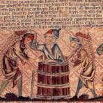 couverture l'histoire de la vigne